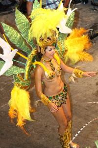 carnaval 2d noche gustavo 2 0257